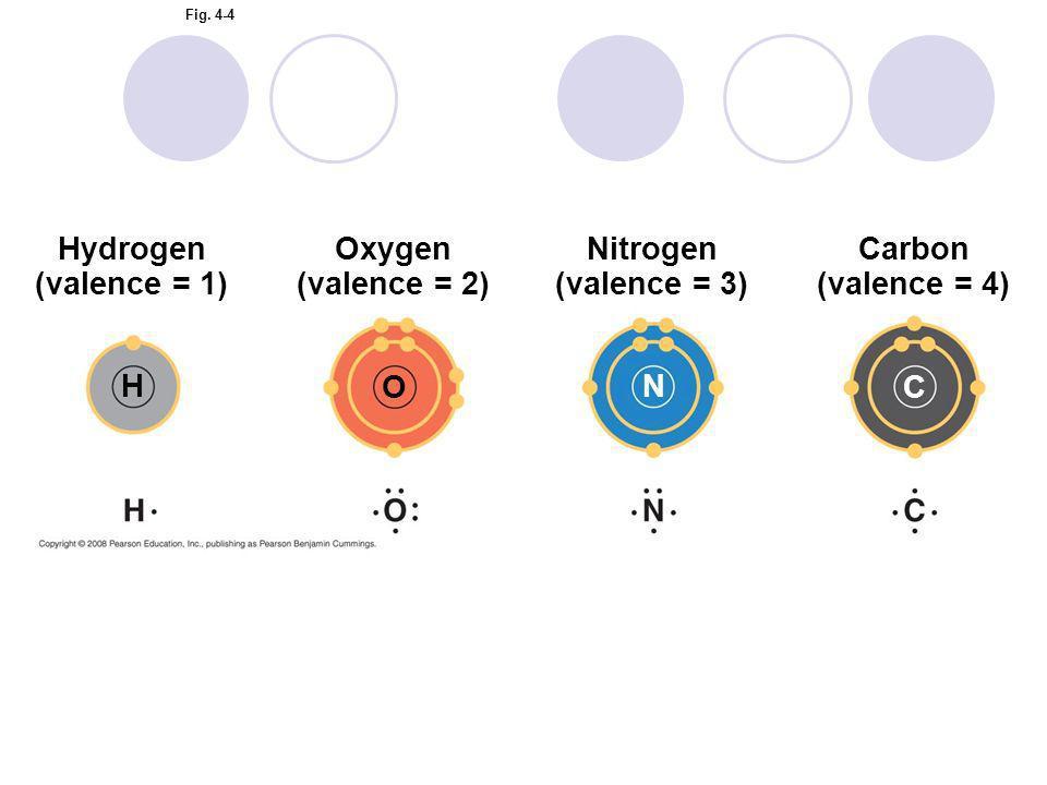 Hydrogen (valence = 1) Oxygen (valence = 2) Nitrogen (valence = 3)