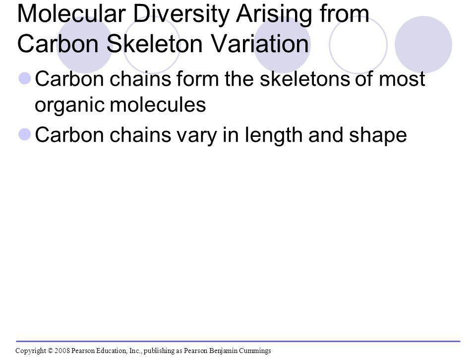 Molecular Diversity Arising from Carbon Skeleton Variation