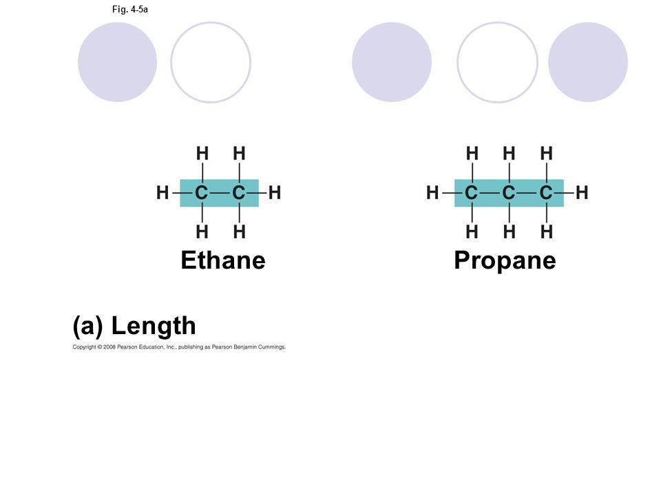 Ethane Propane (a) Length Figure 4.5 Variation in carbon skeletons