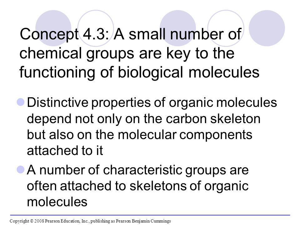 Concept 4.3: A small number of chemical groups are key to the functioning of biological molecules