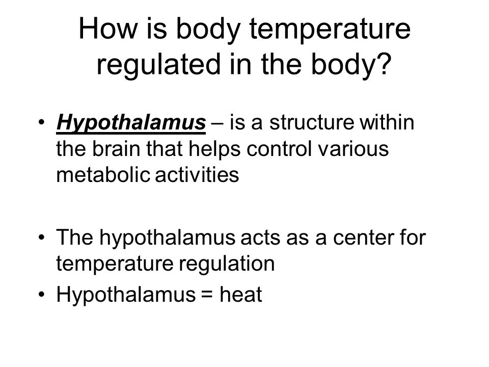 How is body temperature regulated in the body
