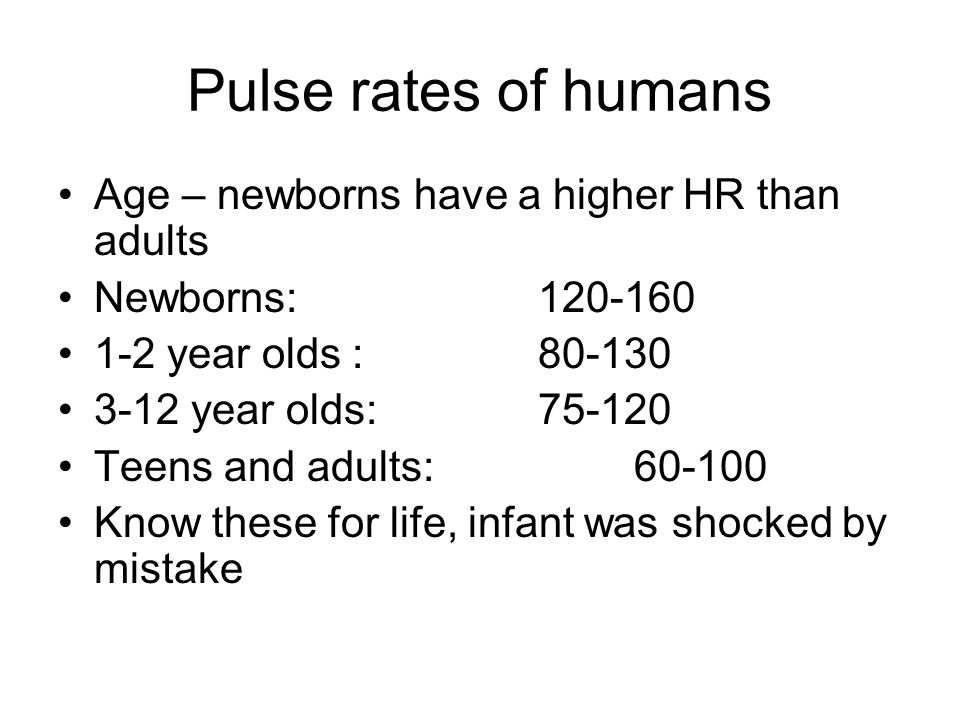 Pulse rates of humans Age – newborns have a higher HR than adults