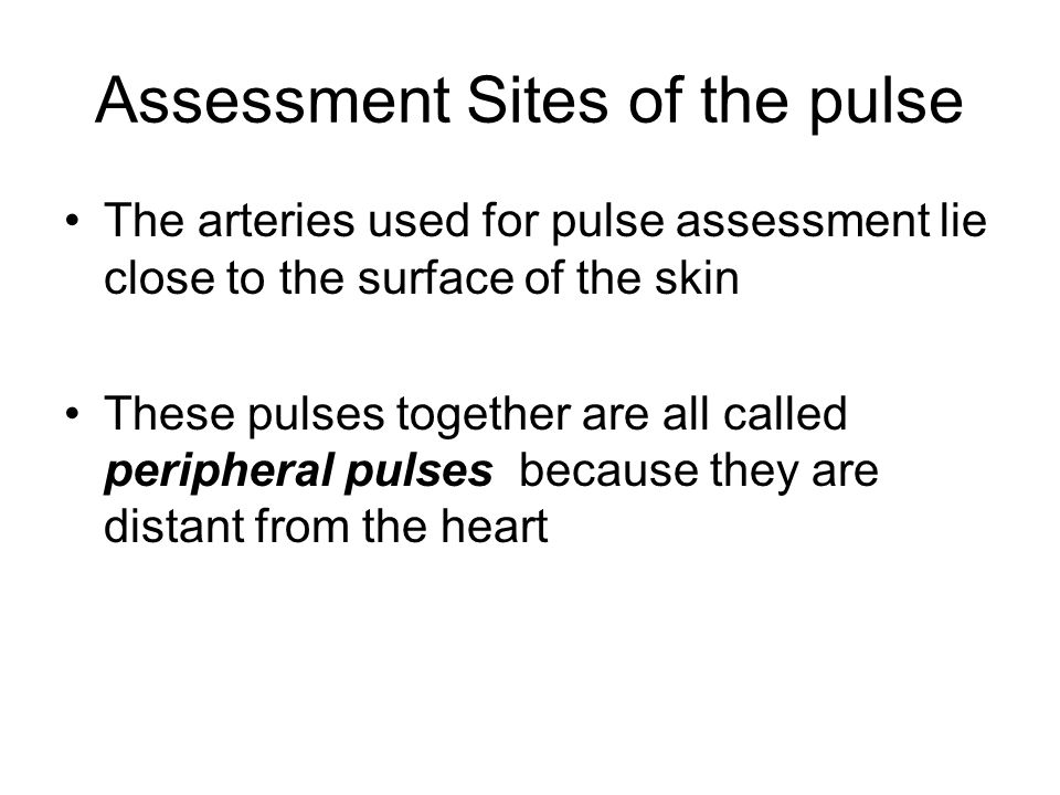 Assessment Sites of the pulse
