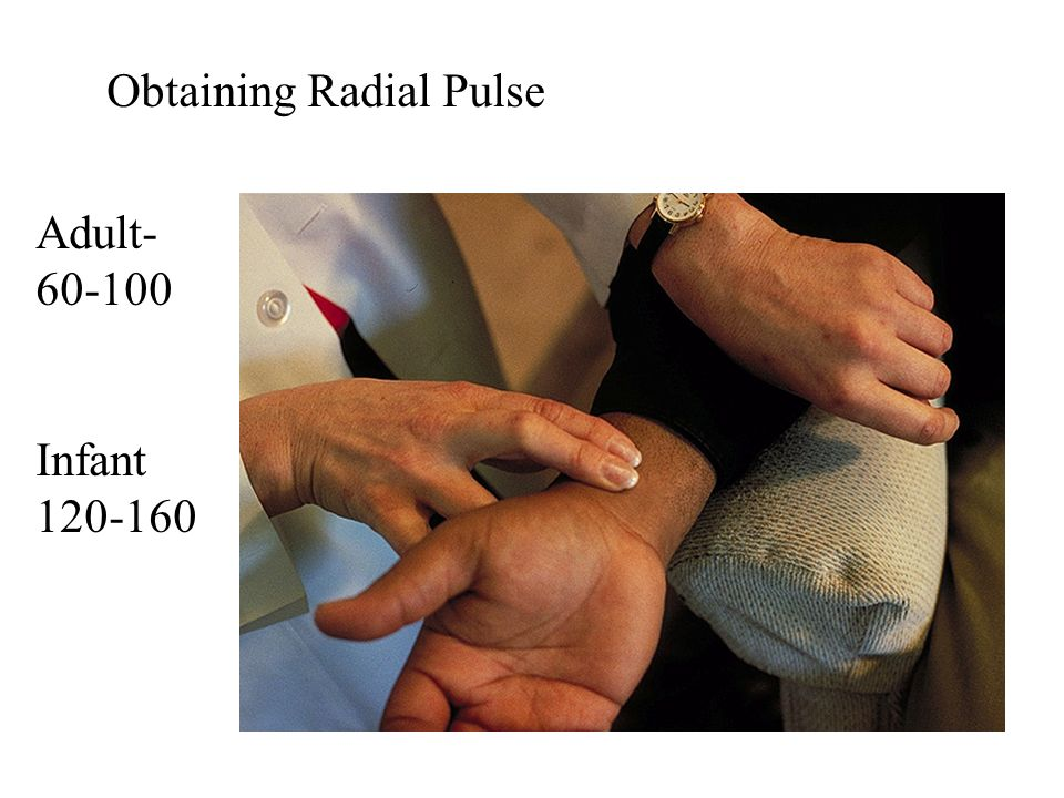 Obtaining Radial Pulse