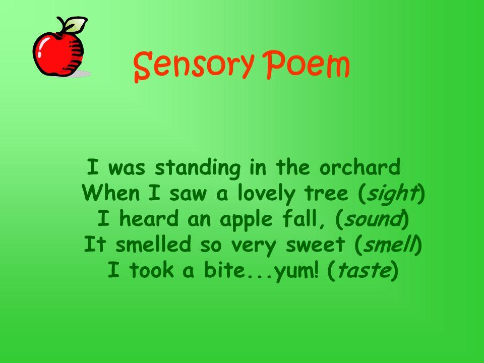 Sensory Poem