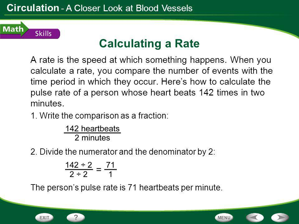 Calculating a Rate - A Closer Look at Blood Vessels