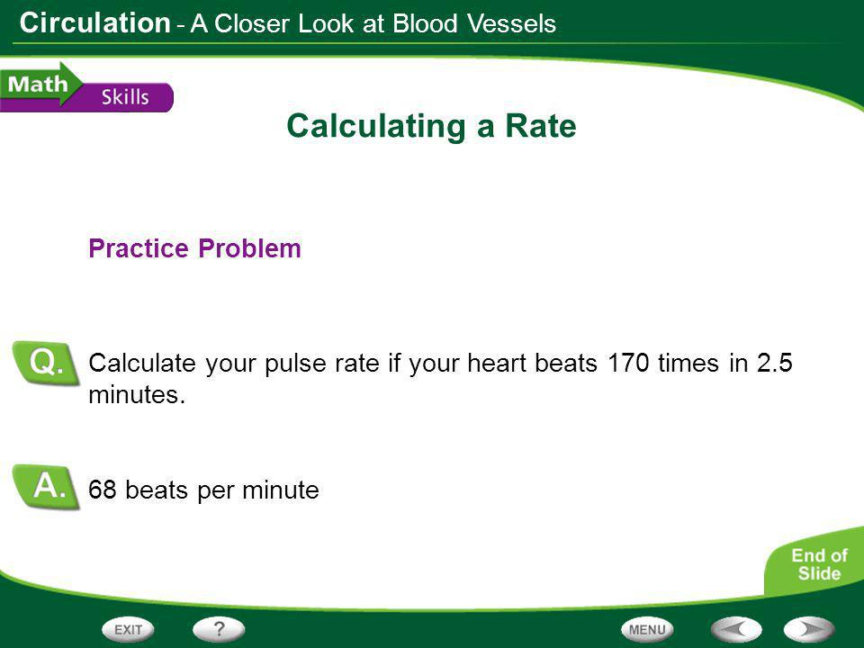 Calculating a Rate - A Closer Look at Blood Vessels Practice Problem