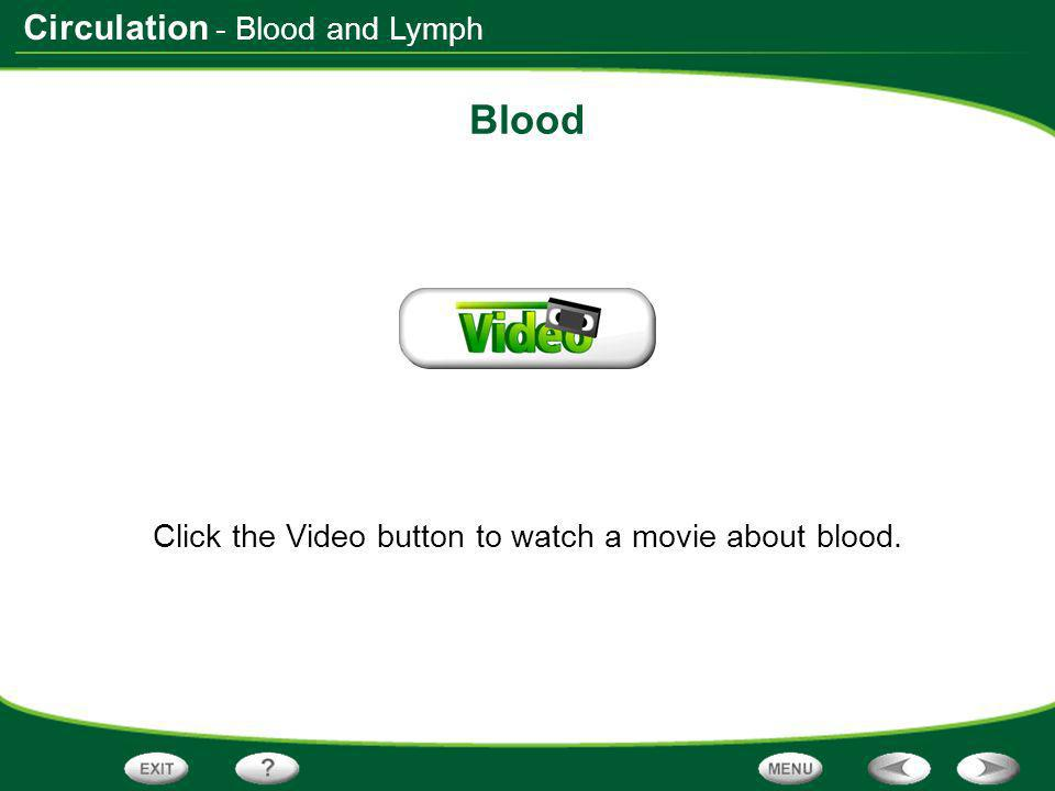 Click the Video button to watch a movie about blood.