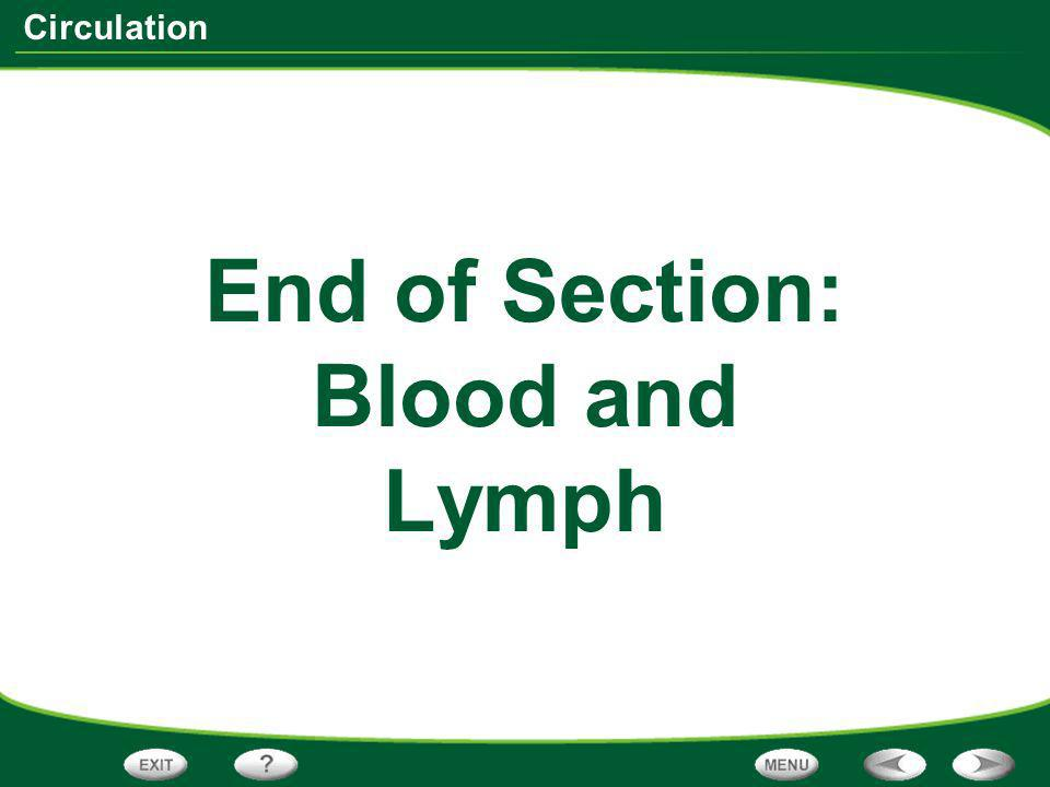 End of Section: Blood and Lymph