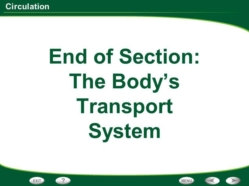 End of Section: The Body's Transport System