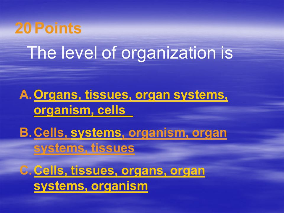 The level of organization is