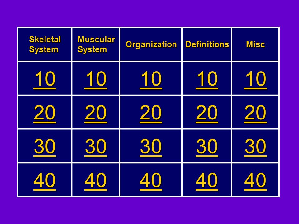 10 20 30 40 Skeletal System Muscular System Organization Definitions