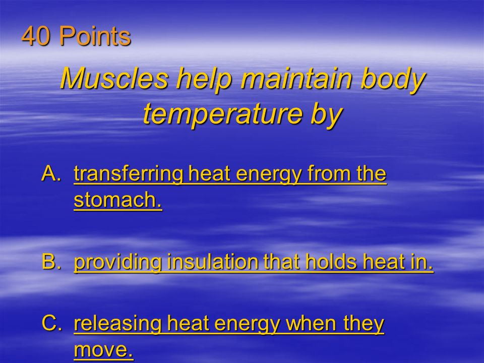 Muscles help maintain body temperature by