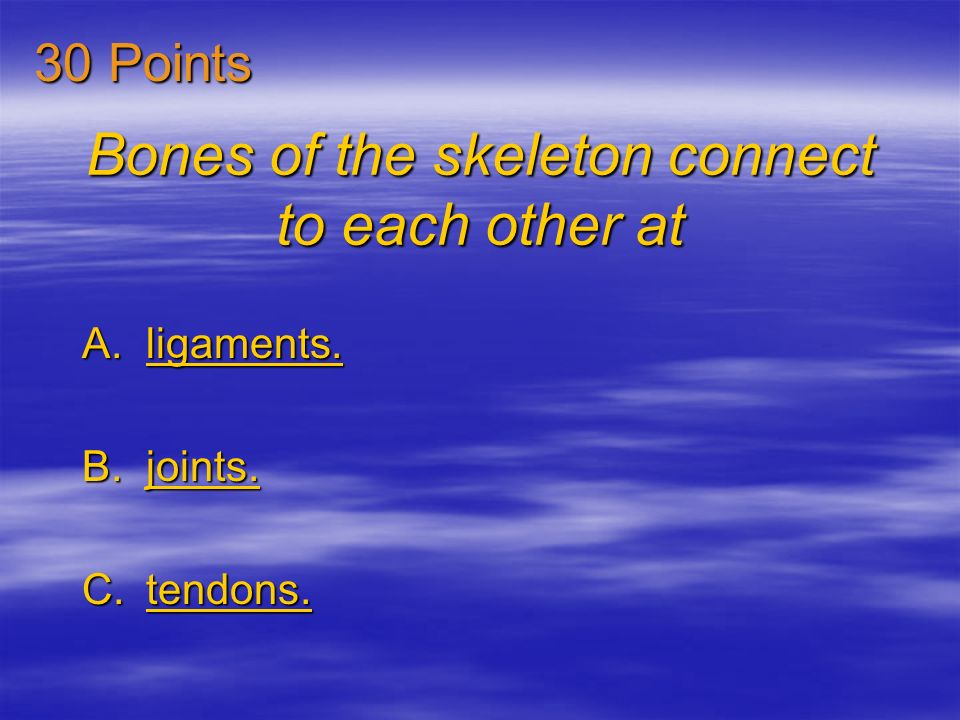 Bones of the skeleton connect to each other at