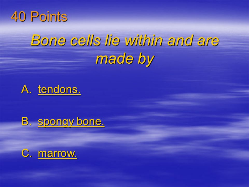 Bone cells lie within and are made by