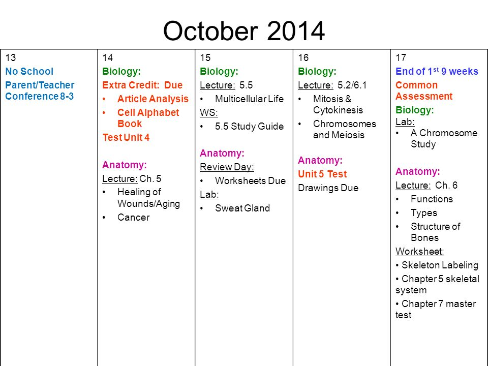 August First Day of School Biology: Syllabus Anatomy: - ppt download