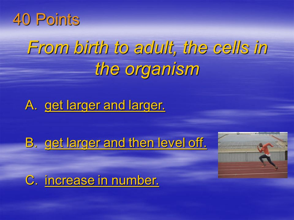 From birth to adult, the cells in the organism