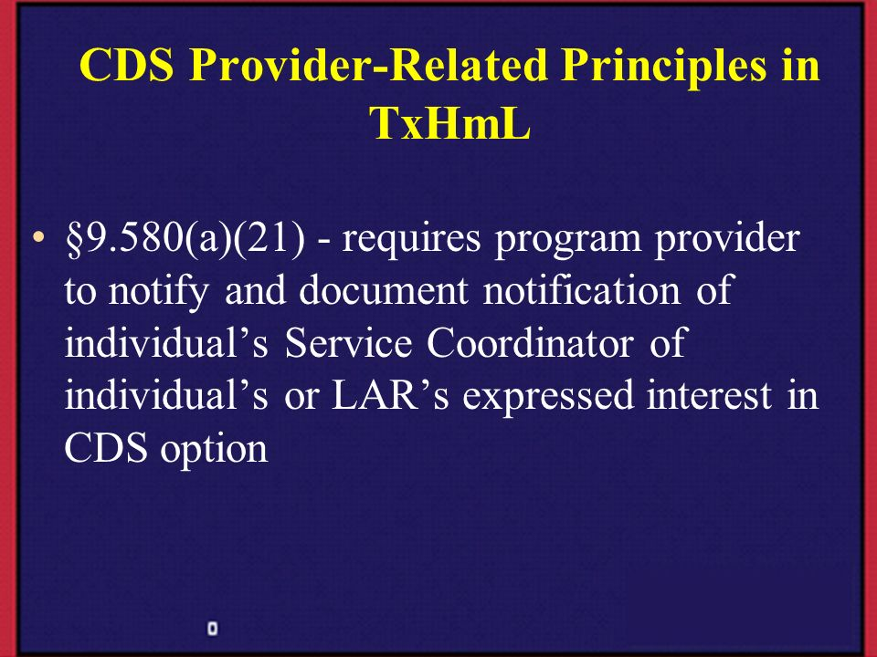 CDS Provider-Related Principles in TxHmL