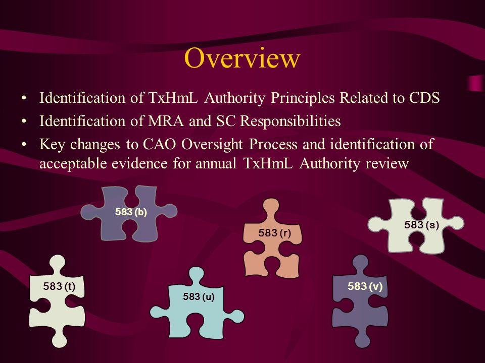 Overview Identification of TxHmL Authority Principles Related to CDS