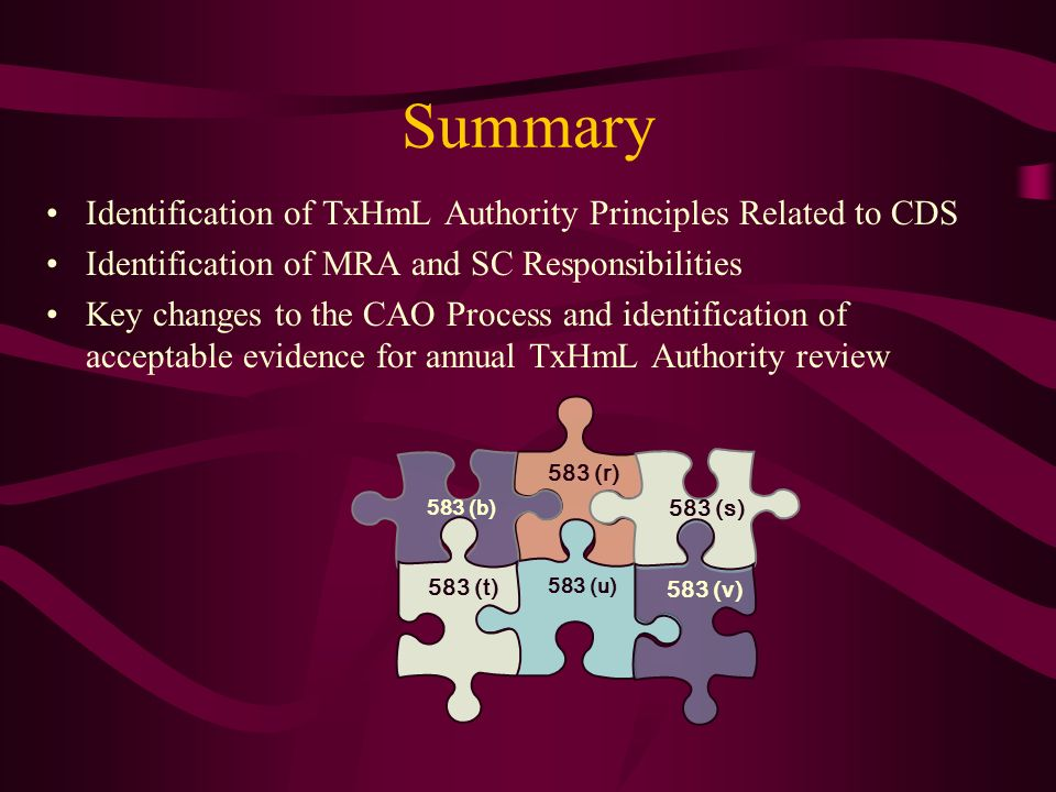 Summary Identification of TxHmL Authority Principles Related to CDS