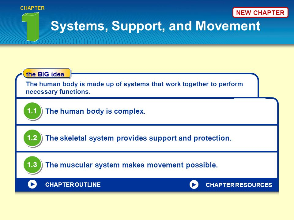 Systems, Support, and Movement