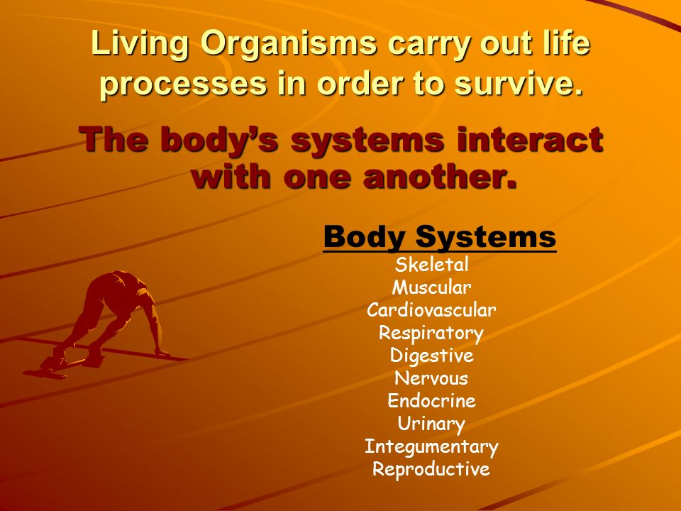 Living Organisms carry out life processes in order to survive.