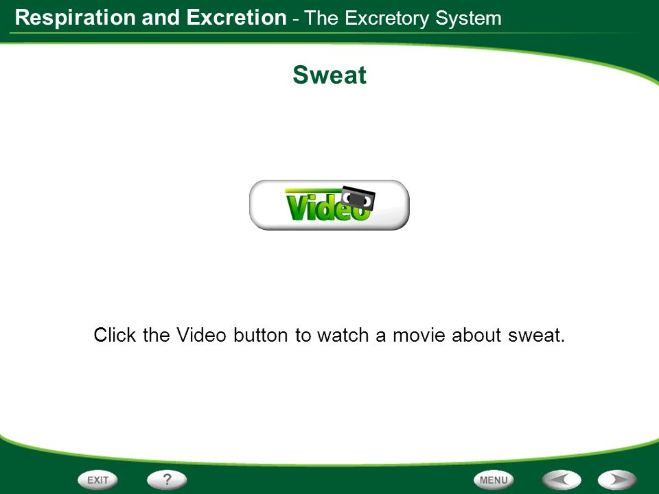 Click the Video button to watch a movie about sweat.