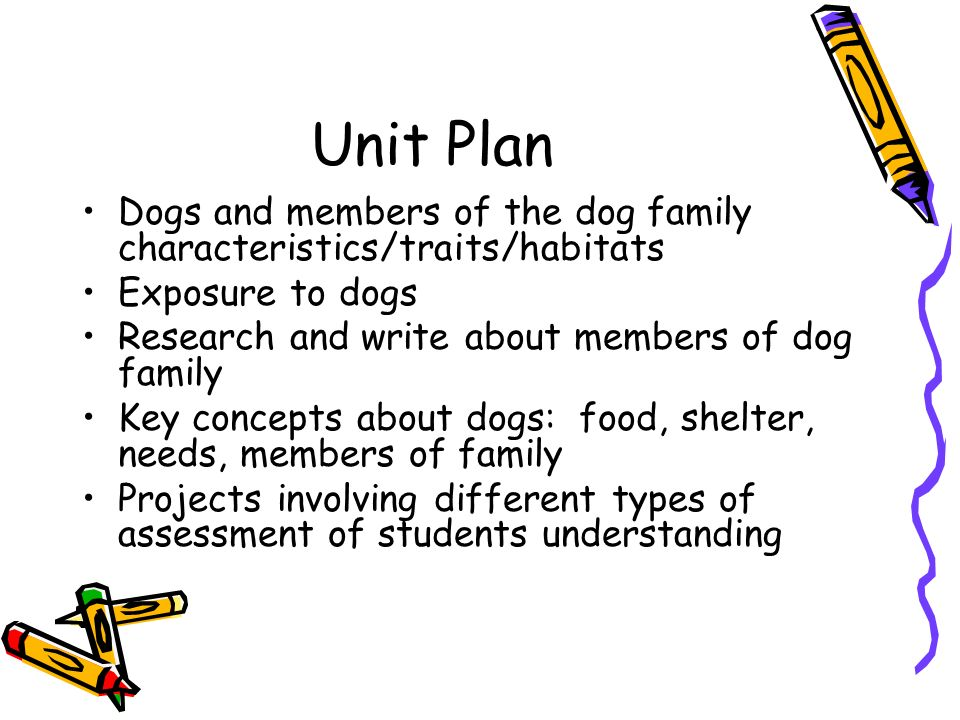 Unit Plan Dogs and members of the dog family characteristics/traits/habitats. Exposure to dogs. Research and write about members of dog family.