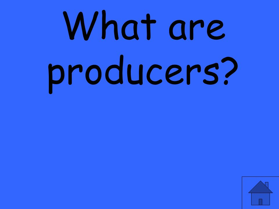 What are producers