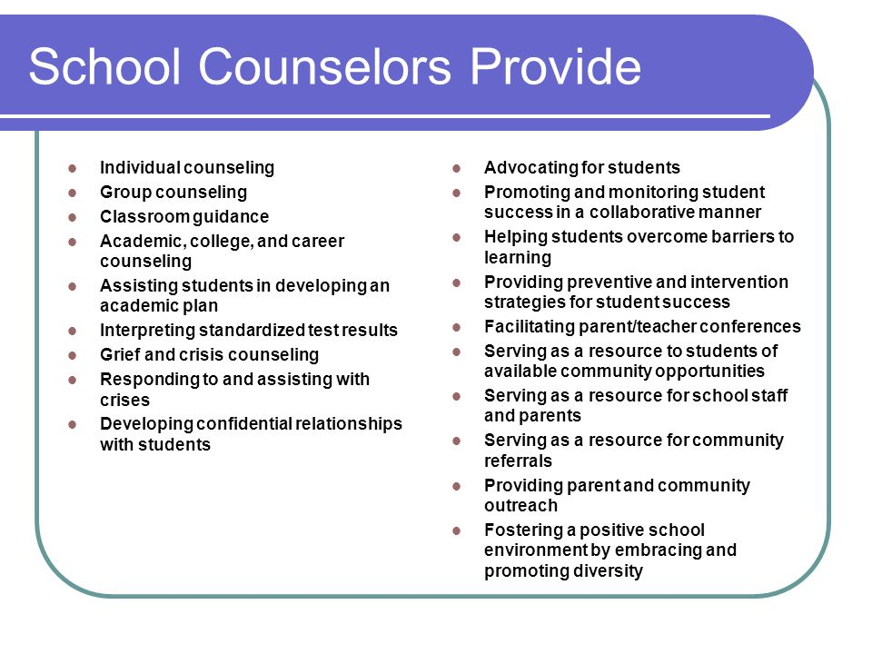 School Counselors Provide