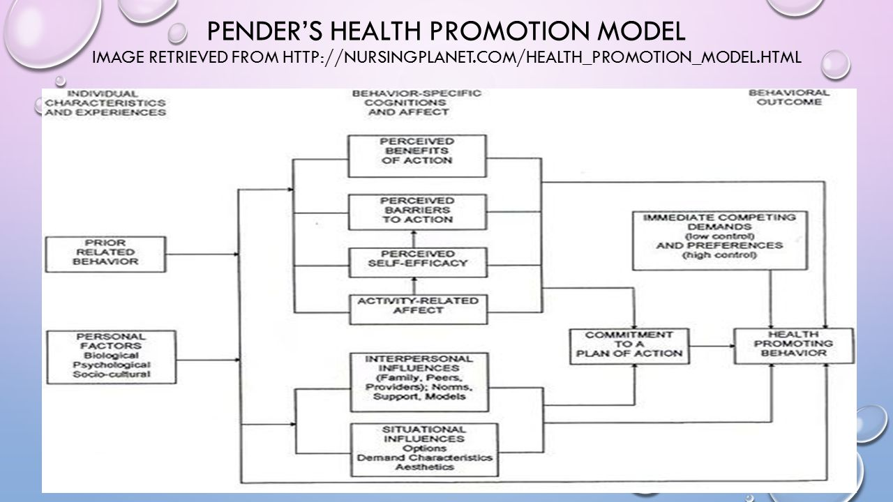 Pender Model