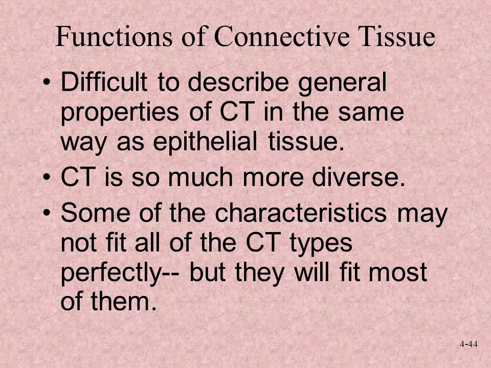 describe connective tissue It is customary to describe dense conective tissue as from the functional viewpoint it must be understood that even in irregular dense connective tissue.
