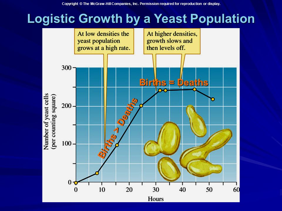 yeast population growth Yeast populations in a closed ecosystem  and the study of population growth rates  each team will receive a yeast culture and analyze yeast population growth.