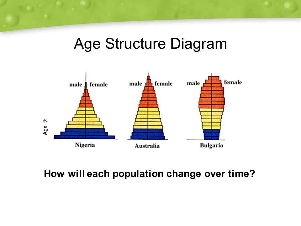 age structure diagrams 28 images human population guided viewing worksheet ap flashcards. Black Bedroom Furniture Sets. Home Design Ideas