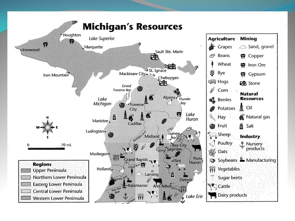Trees are a large natural resource located in the Upper Peninsula.