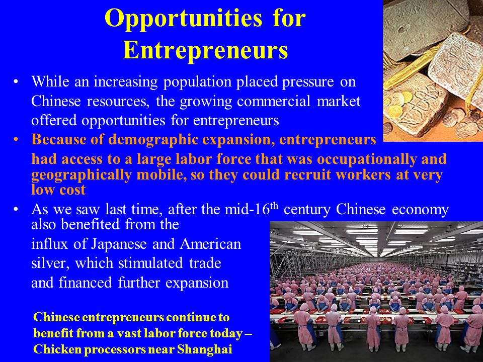 Opportunities for Entrepreneurs