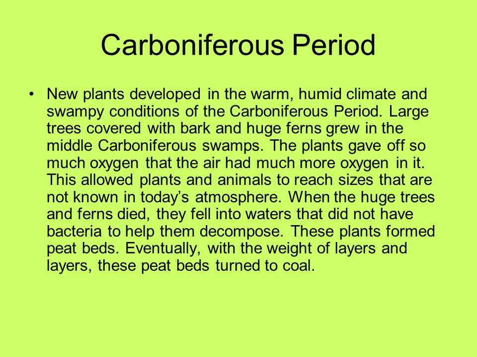 Carboniferous Period