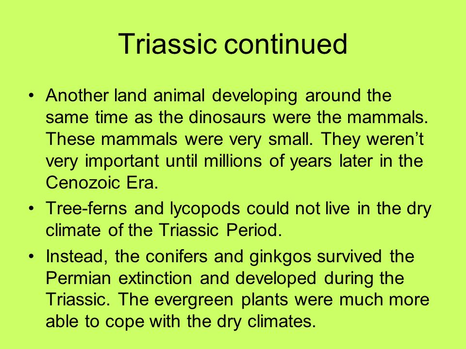 Triassic continued