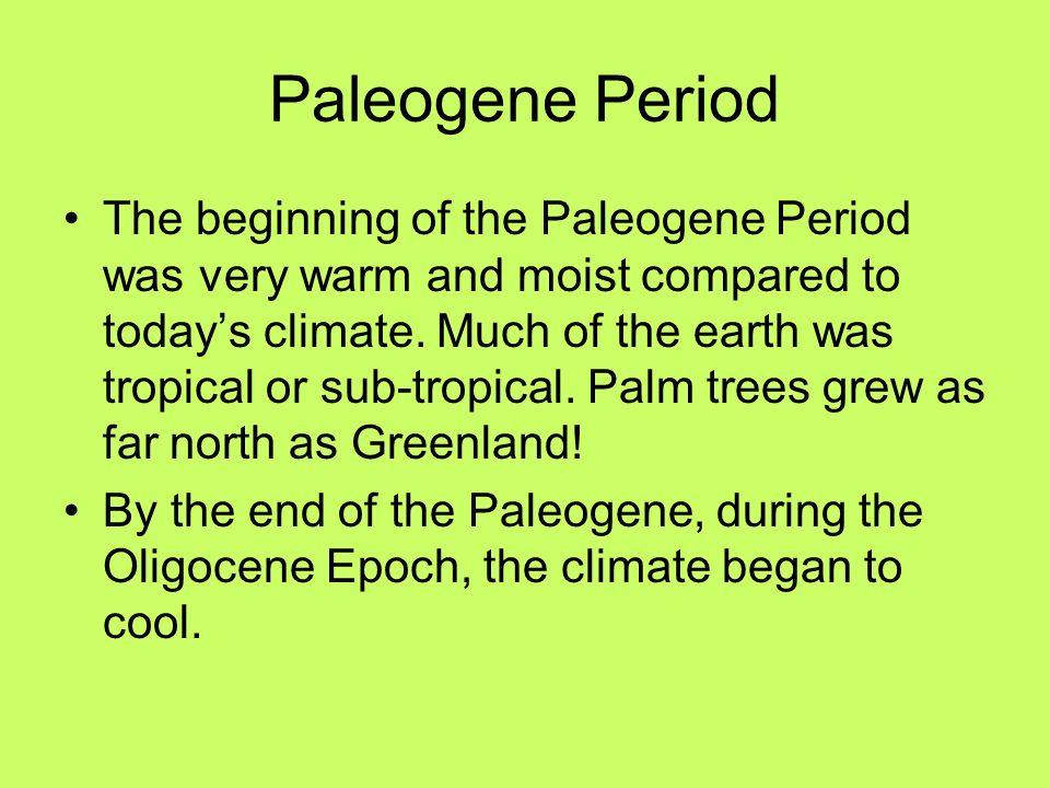 Paleogene Period