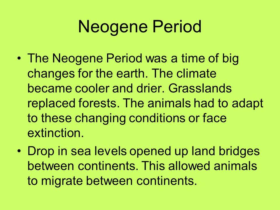 Neogene Period