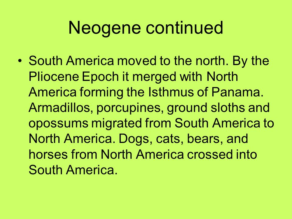 Neogene continued