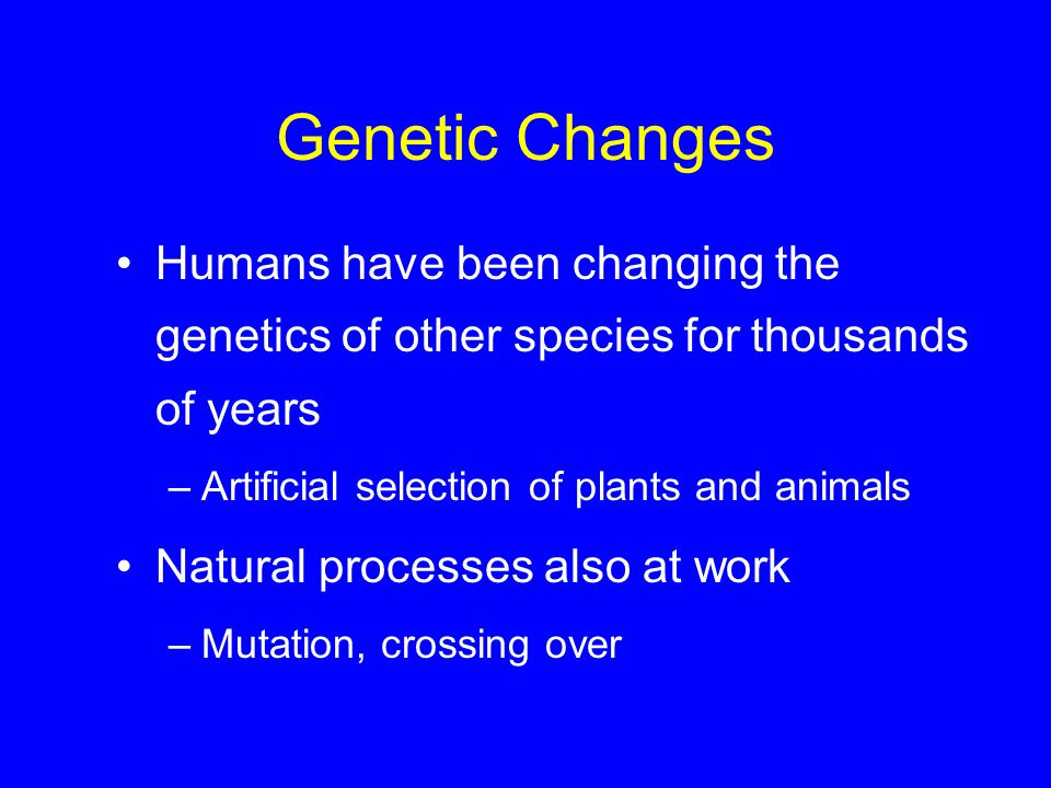 Genetic Changes Humans have been changing the genetics of other species for thousands of years. Artificial selection of plants and animals.