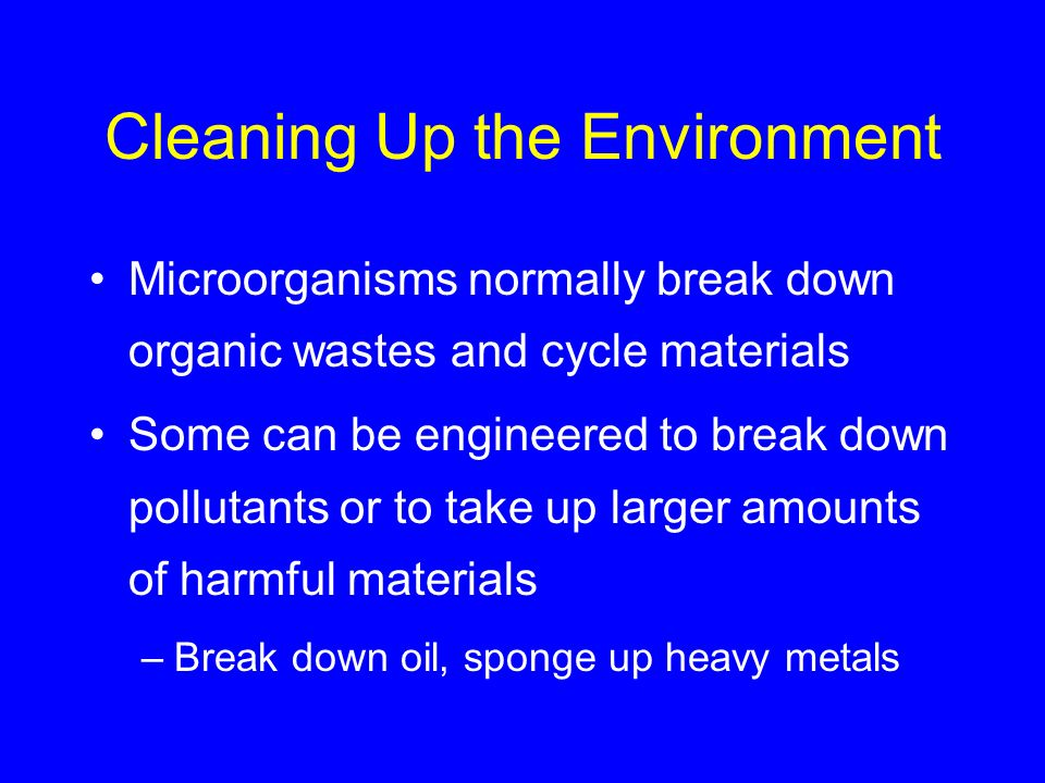 Cleaning Up the Environment