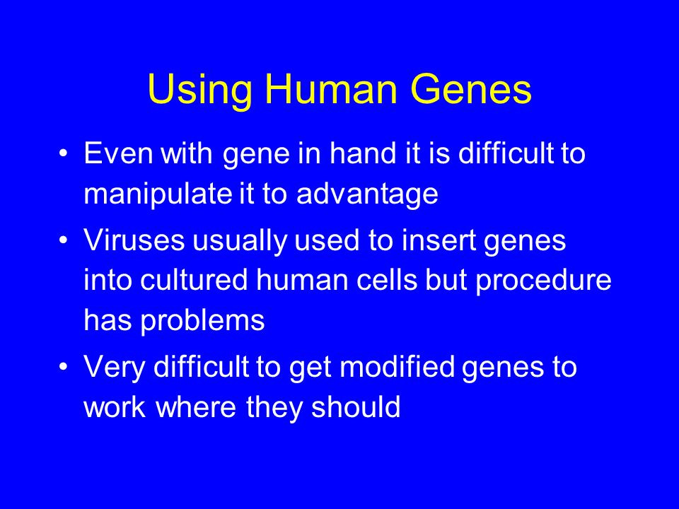 Using Human Genes Even with gene in hand it is difficult to manipulate it to advantage.