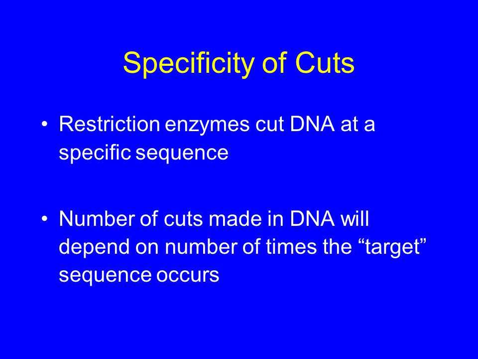 Specificity of Cuts Restriction enzymes cut DNA at a specific sequence