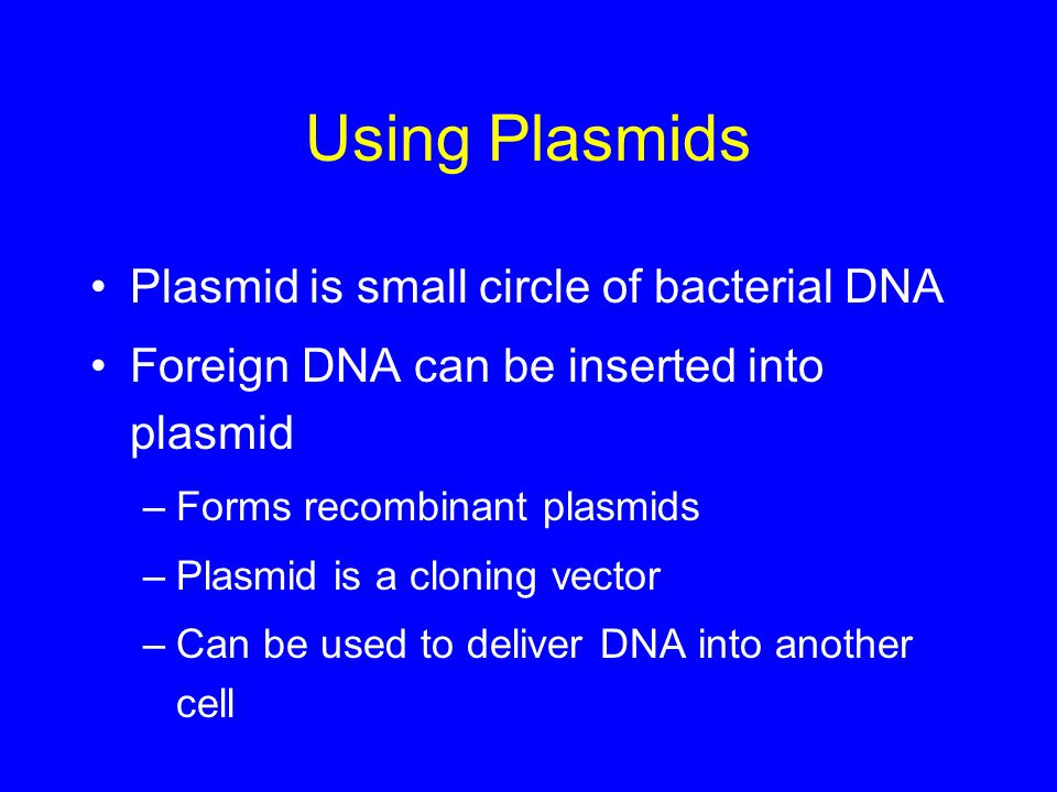 Using Plasmids Plasmid is small circle of bacterial DNA