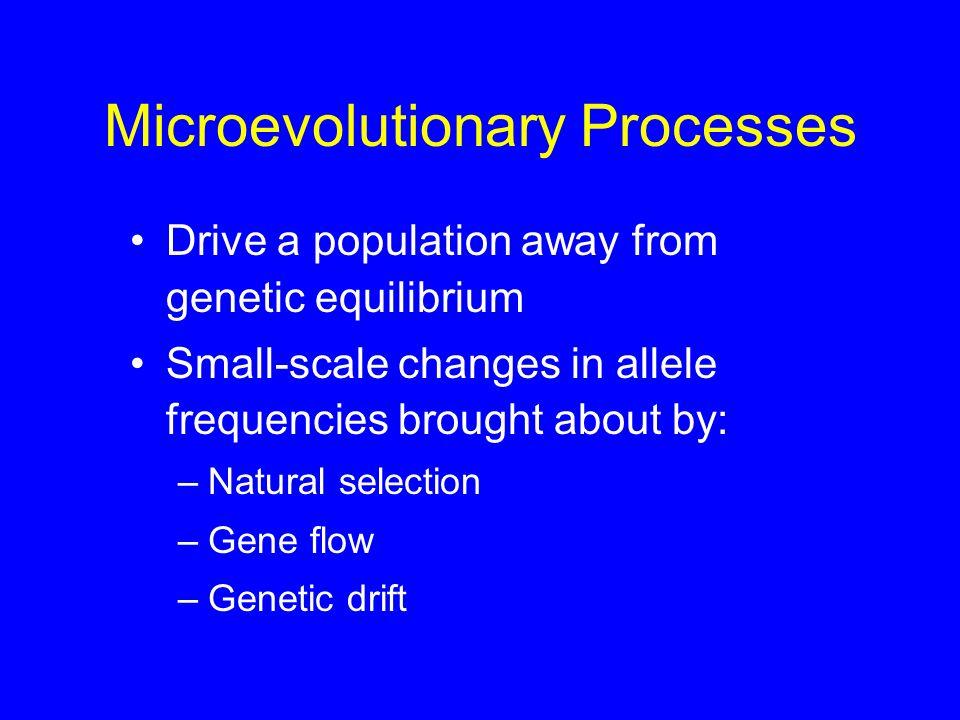 Microevolutionary Processes