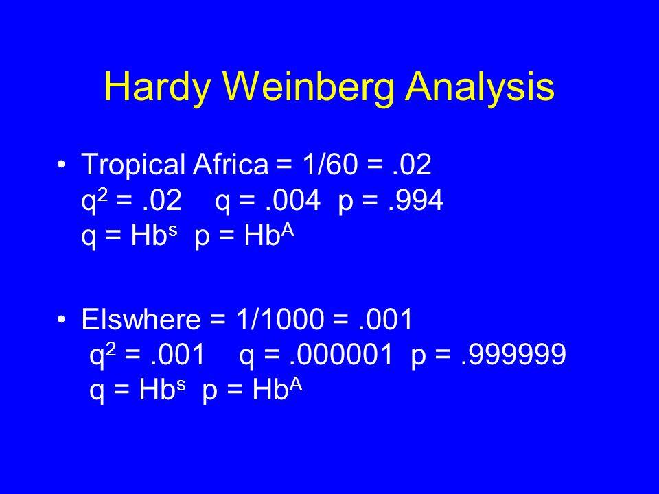 Hardy Weinberg Analysis