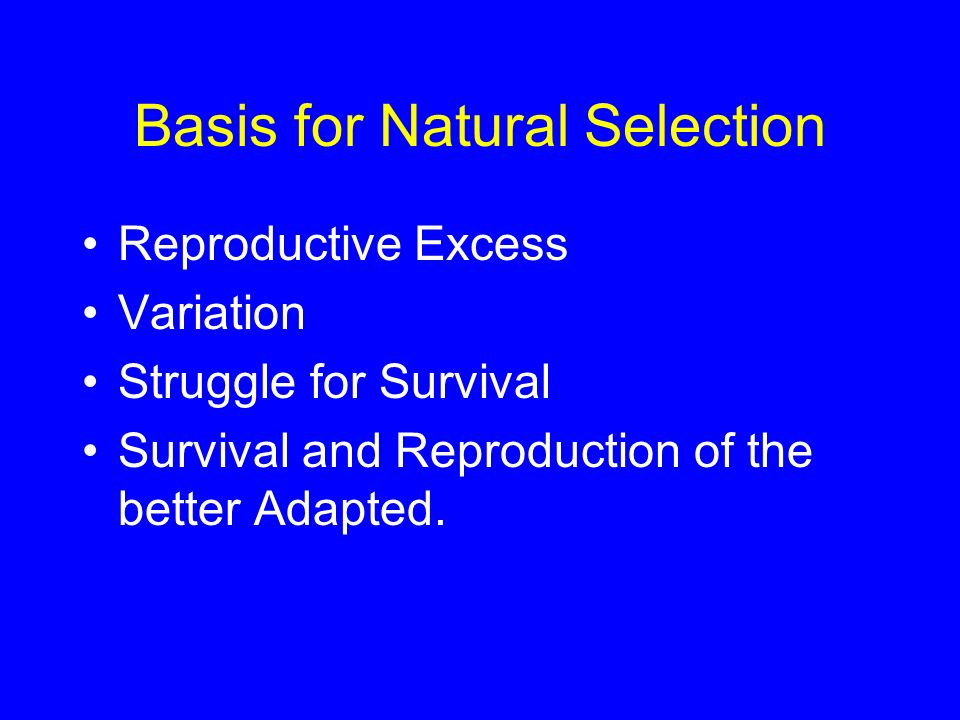 Basis for Natural Selection