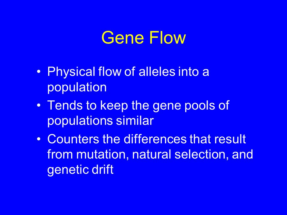 Gene Flow Physical flow of alleles into a population